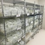 static chrome wire shelving